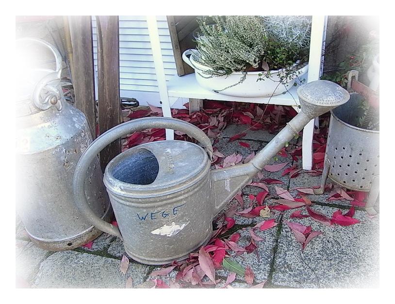 alte verzinkte mauser gie kanne 10 liter m brause shabby chic im landhausgarten ebay. Black Bedroom Furniture Sets. Home Design Ideas